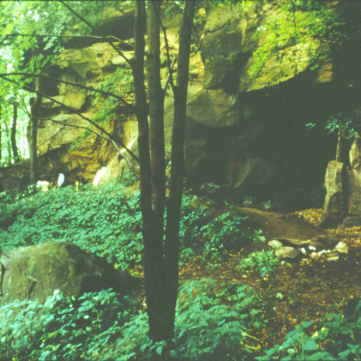 Pre-excavation, Meadowcroft Rockshelter