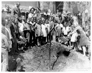 ALT:Miller School students planting a tree at the Wylie Avenue Library, 1966. Pittsburgh Public School Photographs, MSP 117, Detre Library & Archives, Heinz History Center