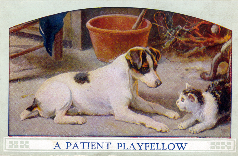 """A Patient Playfellow,"" postcard, c. 1900. Pets were often seen as a way for children to learn good behavior and caring for others. General Postcard Collection, Detre Library & Archives at the History Center."