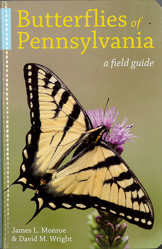 Butterflies of Pennsylvania: a field guide