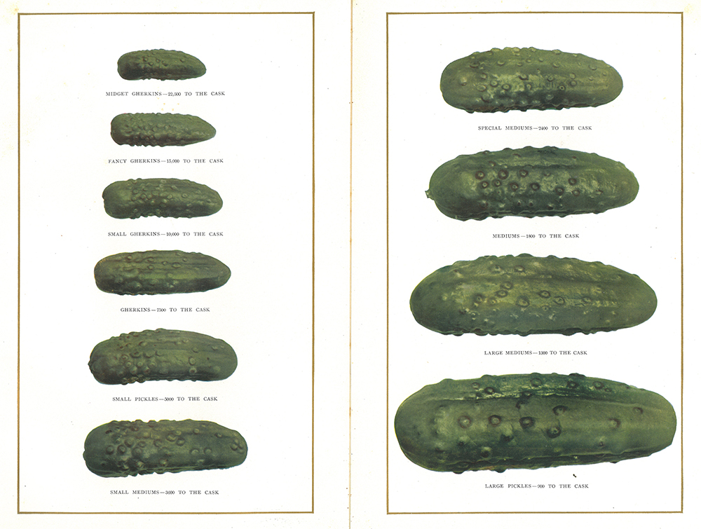 Pickle sizes. Image from the H.J. Heinz Company 1910 product catalogue. | Heinz History Center