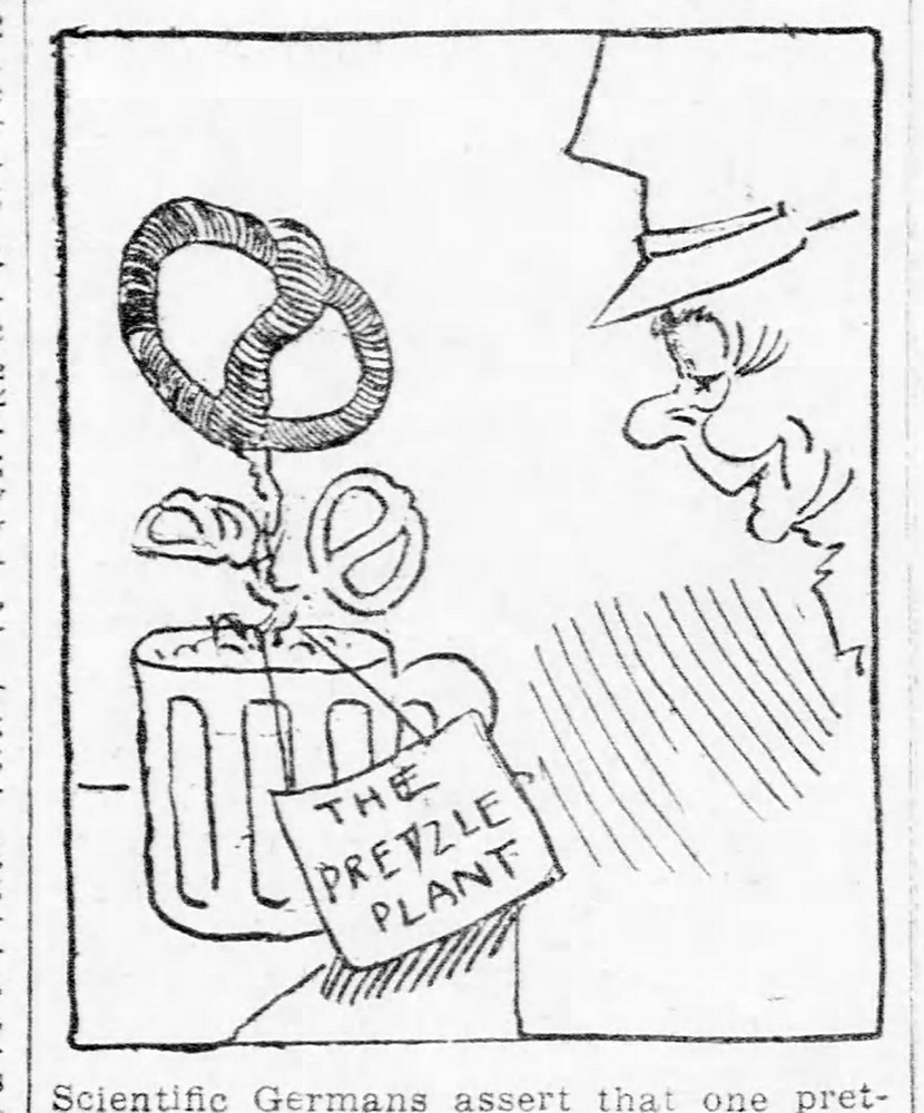 """Cartoon showing a """"pretzle plant"""" growing from a mug of beer, 1912. Pittsburgh Daily Post, July 23, 1912."""