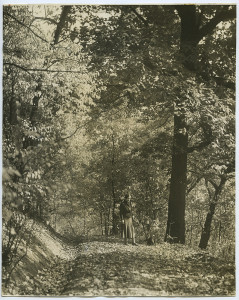 ALT:Woman standing on path in woods in Chatham Village, autumn 1936. | Buhl Foundation Photographs, MSP 187, Detre Library & Archives at the Senator John Heinz History Center.