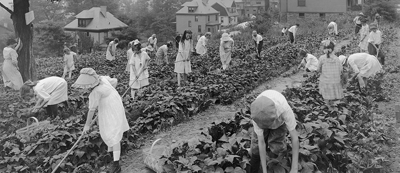 The Edible Schoolyard, 1915