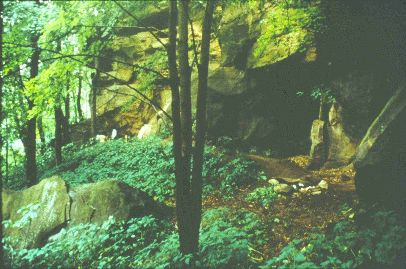 Meadowcroft Rockshelter in 1973 prior to excavation.