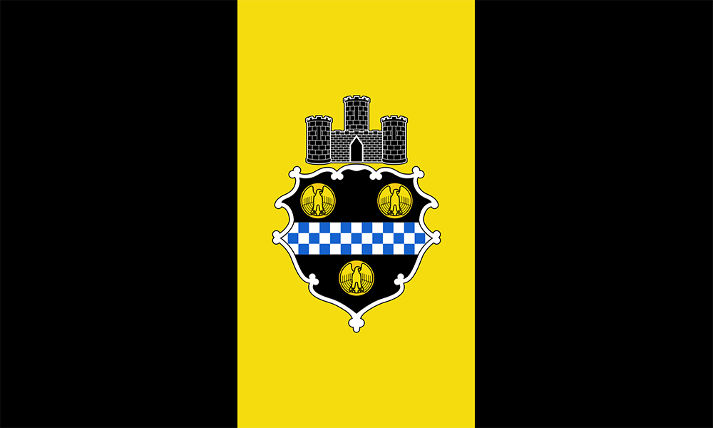 City of Pittsburgh Flag Pin
